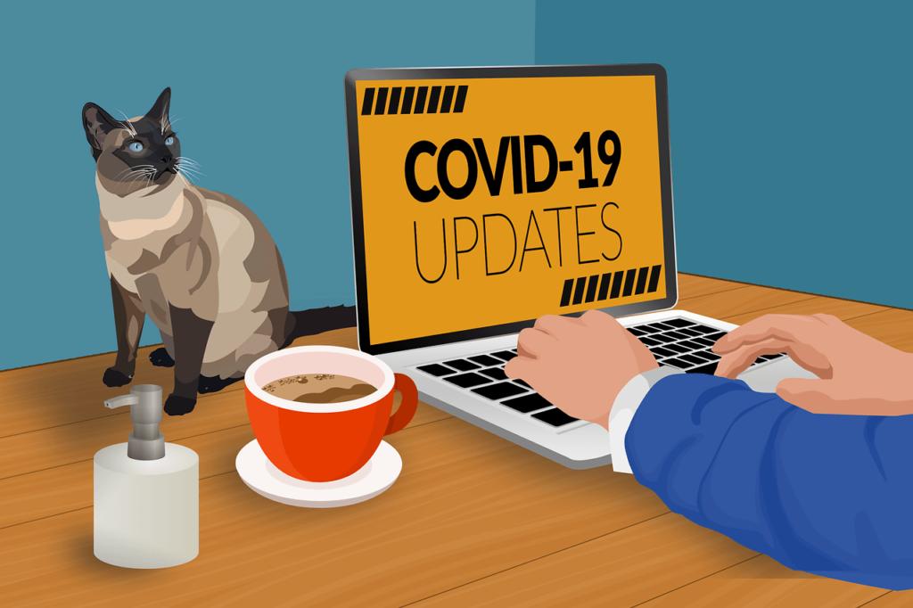 新型コロナウイルス感染症(COVID-19)の画像